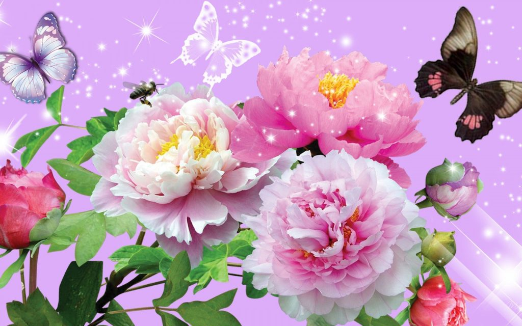 Send Flowers To India Convey Your Love And Wishes