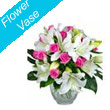 Send Flowers Bhilai