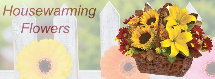 Send online fresh Flowers to India