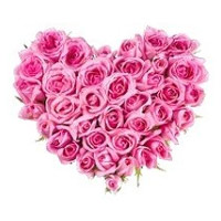 Wedding Flowers Delivery in India : Pink Roses Heart
