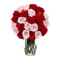Red Pink Roses in Vase 24 Flowers to India