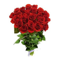 Online Red Roses Bouquet 18 Flowers