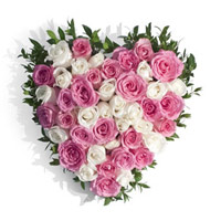 Send Flowers to India : Pink White Roses Heart