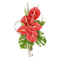 Online Flower Delivery in Delhi Same Day