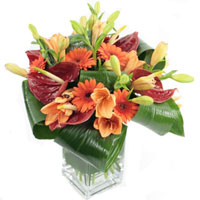 Best Online Flower Delivery in Delhi