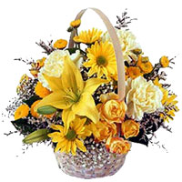 India Flowers : Send Flowers to India