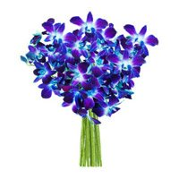 Blue Orchids Bouquet Flowers to Imphal