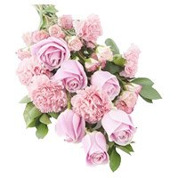 Send online Bhai Dooj flowers to India