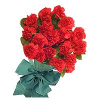 Bouquet of 24 red carnation for Bhaidooj
