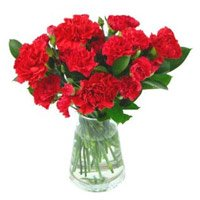 Send New Born Flowers to India