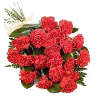 Bouquet of 36 red carnation - Online Flower Delivery