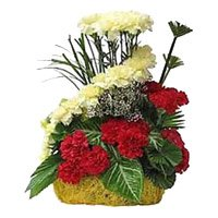 Send Rakhi with Red Yellow Carnation Basket of 24 Flowers to India