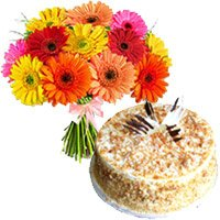 Online Butter Scotch Cake with Rakhi and 12 Mix Gerbera Bouquet to India