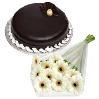Best Flower Delivery India - White Gerbera Chocolate Truffle Cake