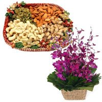 500 gm Assorted dry fruit and 10 purple orchids basket - Send Anniversary Gifts Online