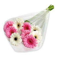 Arrangements of 12 pink and white gerbera Bhai Dooj flowers to India