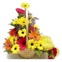 Send Flowers to Delhi Online : Mixed Gerbera Arrangement