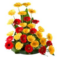 Flower Delivery Delhi : Red Yellow Gerbera
