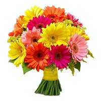 Anniversary Flowers to India : Mix Gerbera Bouquet