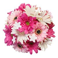 Bouquet of 36 white and pink gerbera - Flower Delivery in India