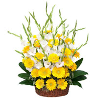 Flowers in India Same Day Delivery