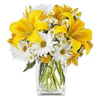 Flowers to India : Yellow Lily White Gerbera
