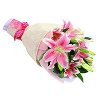 Flower in India : Pink Lily