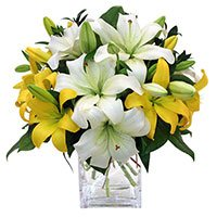 Online Flowers Delivery India