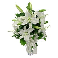 Online Flower Delivery in India : White Lily