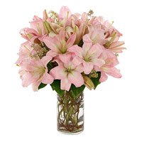 Online Lily Flowers to India