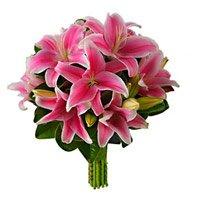 Holi Flowers to India : Pink Lily to India