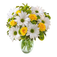 Exclusive Flowers to Imphal,  White and Yellow Flowers in Vase