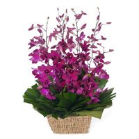 Reliable Florist in India