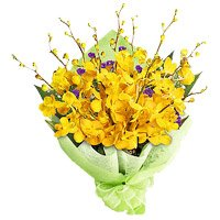 Online Flowers to Imphal