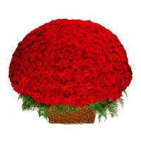 Send Red Roses Basket 500 Flowers to India