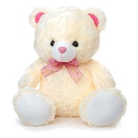 Teddy Bear for anniversary