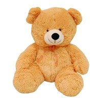 Send Teddy Bear in India