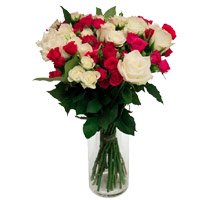Send White Pink Roses Vase 24 Flowers Delivery in India