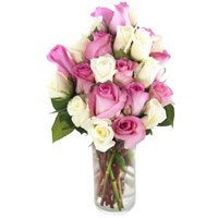 White Pink Roses Vase 25 Flowers to India