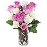 Send Pink White Roses Vase 12 Flowers