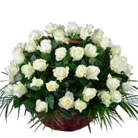 Online Flowers to India : White Roses