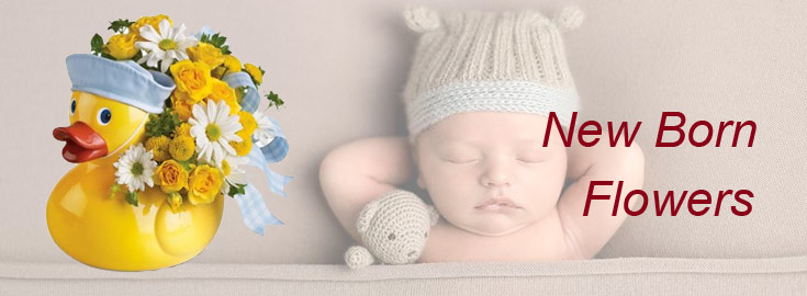 Send Newborn Gifts To India Baby Shower Gifts Delivery In India